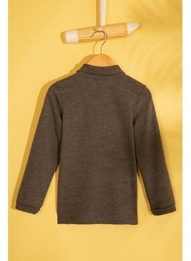 U.S. Polo Assn. Sweatshirt Gri